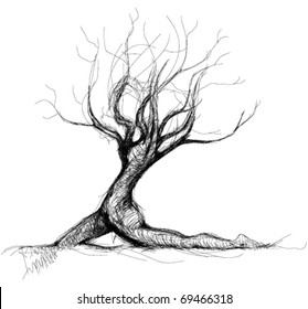 Tree like woman body / realistic sketch (not auto-traced)