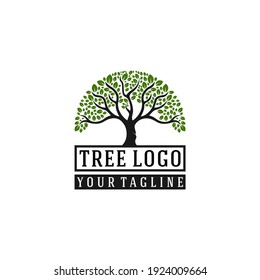 tree logo with tree illustration that looks lush and lush foliage