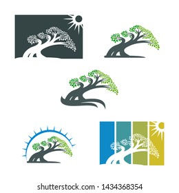 tree logo template. bonsai design icon symbol - vector