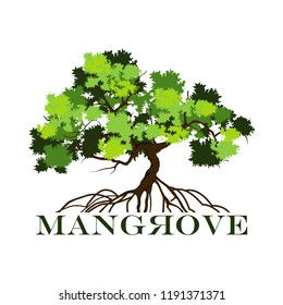tree logo template, with mangrove tree and roots, vector illustration