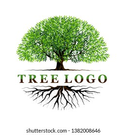 tree logo templates with circular shape, and name of the logo in the middle