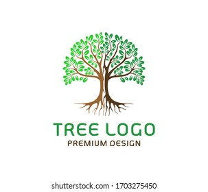 Tree logo vector illustrations, roots, mangrove tree isolated on white.