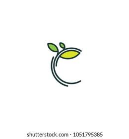 Tree logo, vector logo template