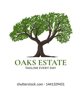 Tree oaks logo design - vector