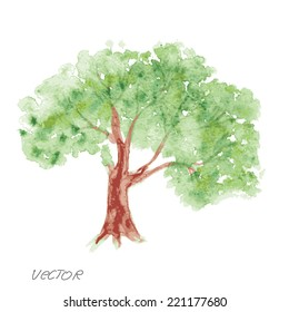 tree on a white background. watercolor painting vector