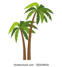 Tree palms isolated
