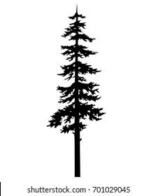 tree pine silhouette tattoo tribal, drawing cedar, fir, cypress. chistmas tree vector silhouette, tattoo isolated pine, cedar, cypress, fir