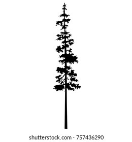 Cypress Tree Tattoo Images Stock Photos Vectors Shutterstock