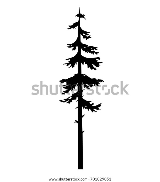 Tree Pine Silhouette Vector Logo Tattoo Stock Vector Royalty Free