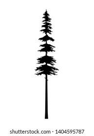 tree pine silhouette vector,  tattoo tribal cedar design isolated