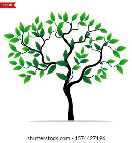 Tree plants and green leaves against a white background, vector