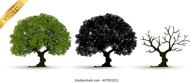 tree with a realistic