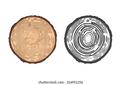 Tree rings background and saw cut tree trunk. Vector illustration of tree rings. Cross section of tree stump isolated on white background