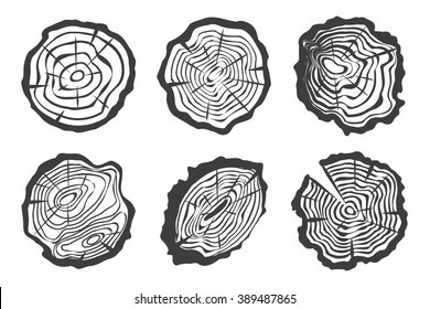 Tree rings set isolated on white background. Saw cut trunk in bark. Vector Illustration.