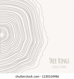 Tree rings texture collection. Wooden circle. Abstract art lines. Tree trunk cross-section. Vector graphics illustration background.