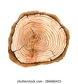 Tree rings. Watercolor illustration. Vector hand drawn abstract background. Painted wood. Natural texture. Artistic design.