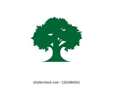 Tree root, greenoak logo