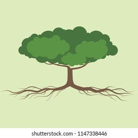 tree and root ilustration