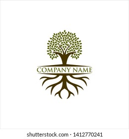 tree and root logo design