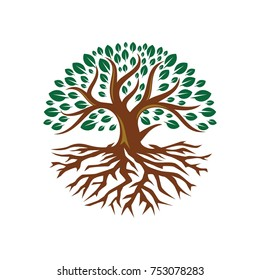 Tree root logo flat design illustration