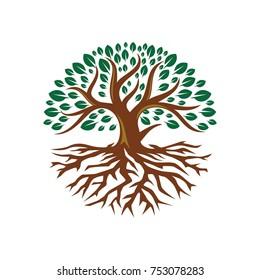 Tree root logo flat design illustration