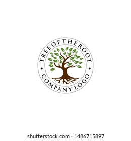 tree with the root logo template