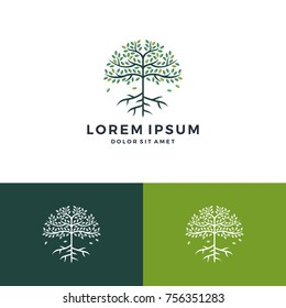 tree and root logo vector leaf round circle emblem badge download