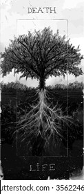 tree with root vector art