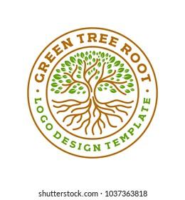 tree roots circle logo badge modern