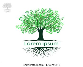 Tree and roots with green leaves look beautiful and refreshing.Tree and roots LOGO style.