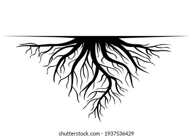 Tree roots icon. Vector EPS 10