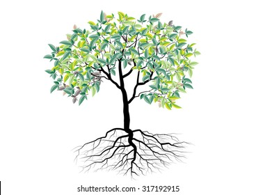 tree with roots ,isolated tree vector illustration