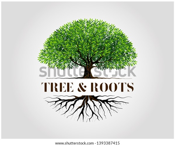 Tree and roots logo design vector isolated,  tree with round shape