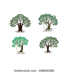 Tree and roots  vector illustration design, mangroves tree set
