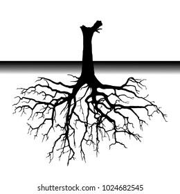 tree roots (Vector illustration).Eps10