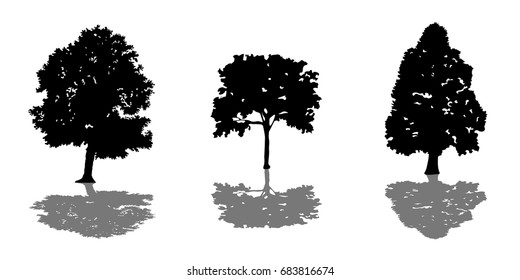 Tree set of black silhouettes with shadow vector illustration