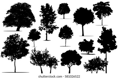 Tree set,Silhouette of different trees. Black tree silhouettes on white background,silhouette of trees,Set of abstract trees,black tree Design work for publication, website, products.