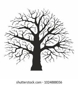 Tree silhouette on white background