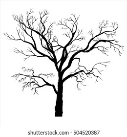tree silhouette without leaves, winter twigs,isolated hand drawn vector elements