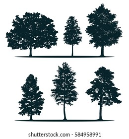 Tree silhouettes - green oak, maple, poplar, larch, pine, siberian pine. Set of different trees.