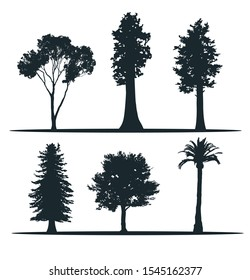 Tree silhouettes - madrona ,sequoia, redwood, pine, acer, palm. Set of Californian trees. American trees.