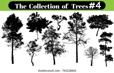 tree silhouettes on white background. Vector illustration.