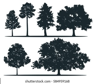Tree silhouettes - pine longleaf pine, red cedar, sugar maple, green oak. Set of different trees.