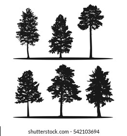 Tree silhouettes - red cedar, siberian pine, longleaf pine, larch and pines. Coniferous forest.