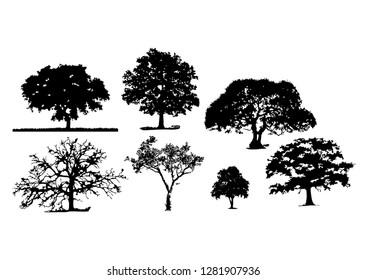 tree silhouettes white background