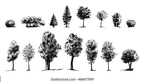 Tree Sketch drawn ink silhouettes of trees, hand drawing, set of trees and shrubs