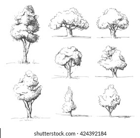 Tree sketches set