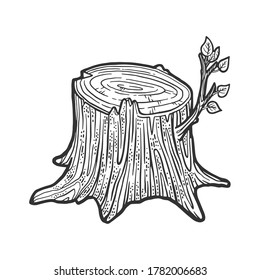 Tree stump with sprout sketch engraving vector illustration. T-shirt apparel print design. Scratch board imitation. Black and white hand drawn image.