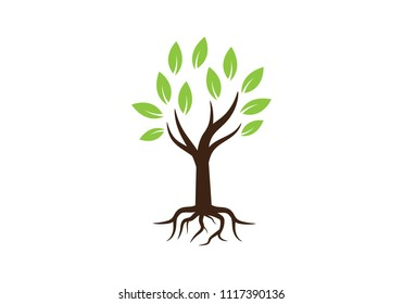tree symbol and  icon logo design template