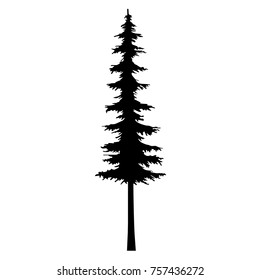 tree tattoo fir silhouette pine design, icon tattoo tribal pine - cut out vector illustration on white background